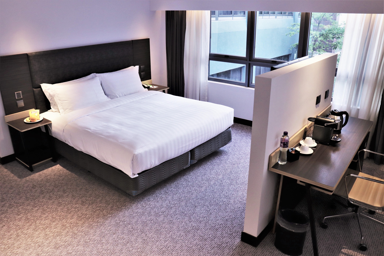 Comfy PLUS Room